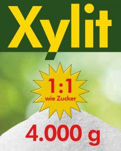 Xylit Birkenzucker 4kg - 4 x 1kg Beutel